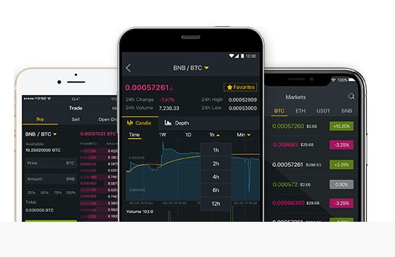 Screenshot of the Binance advanced trading platform